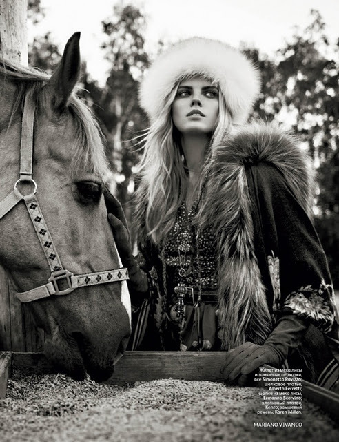 horse and fur